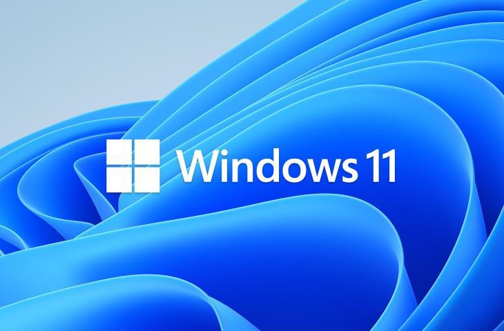 Windows 11. (Microsoft)